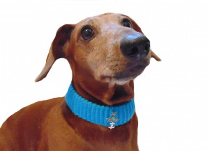Knitted collar for dog cat,collar  for dog cat, knitted collar for dog, collar for cat, decorative collar, gift collar for dog
