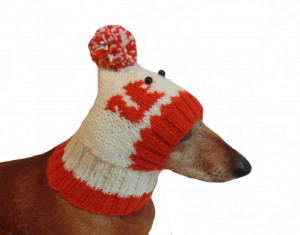 Winter knitted hat squirrels for a small dog, hat for dogs pet , handmade hat dachshund, knitted hat, gift hat, hat squirrels gift for dog