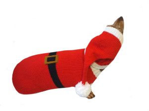 Santa costume for dachshunds, christmas dachshund santa costume hat and sweater