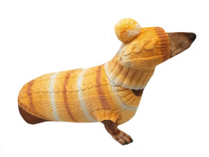 Winter warm sweater set and hat for dog, hat for dachshund, clothes for dachshunds, sweater for dogs, clothes for dogs, dachshund sweater