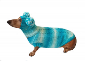 Warm blue suit sweater and hat for dog, hat for dachshund, clothes for dachshunds, sweater for dogs, clothes for dogs, dachshund sweater