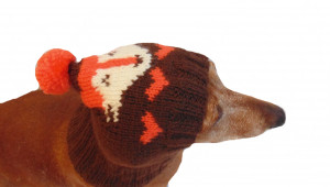 Winter knitted hat for small dog, hat for dogs pet , handmade hat dachshund, knitted hat, gift hat, hat squirrels gift for dog