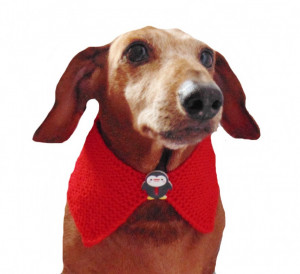 Knitted collar for dog with penguin