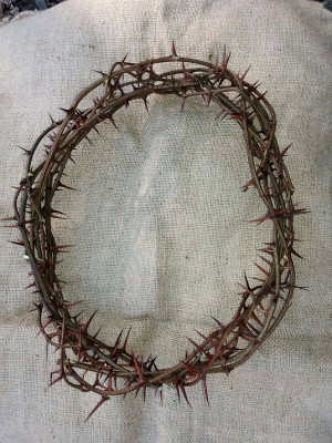 sharp real thorn,Jesus Christ crown,thorns crown home decor door protection Christ crown of thorns christian passover rustic unique prop