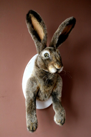 Easter bunny animal, faux taxidermy, personalized rabbit head, rustic home decor, custom stuffed toy, collectible art doll, wall mount