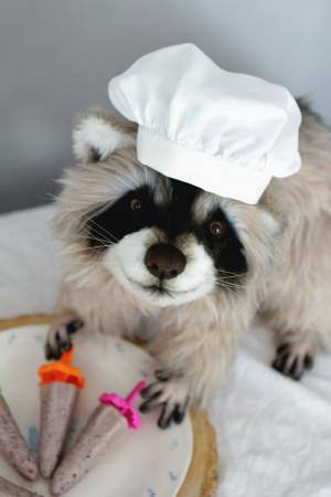 Raccoon plush animal, teddy bear design, woodland stuffed art doll, baby shower gift, collectible toy