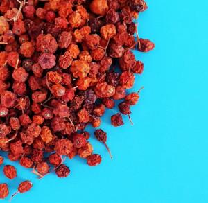 1lb Red Rowan Berries Dried, 100% Organic, wild harvested berry, Sorbus Aucuparia, whole rowan berries, organic tea berries