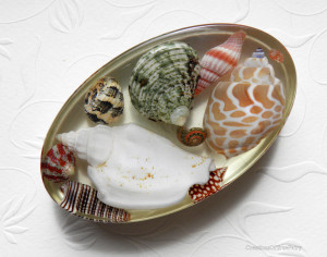 Sea shell paperweight Gift for coworker Best friend Boyfriend husband gift Seashell table décor Desk accessories Home office décor A9F 6