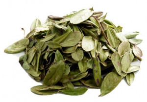 Dried Lingonberry leaves, Organic Lingonberry leaf, Cowberry leaves