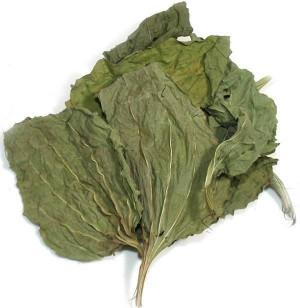 Plantain leaf, dried Plantain Large Leaf