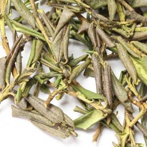 Rhododendron adamsii, SAGAN DALYA, Sagan Dayla tea herb