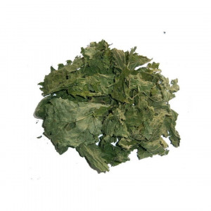 Nettle leaves, Organic Dried Nettle Herbal Tea,stinging nettle leaf, Urtica herb
