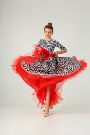Ballroom dance dress  WILD STORM
