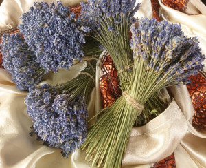 5 Dried lavender Bunches 250-280 stems each, Dry Lavender Bundles, Dried Lavender bouquets, Dried Lavender, Wedding decor, Dried  flowers