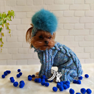 dog costumes for dogs knitted dog sweater dresses for dogs dog costume yorkie puppy clothes dog clothing knitted chihuahua dog coat