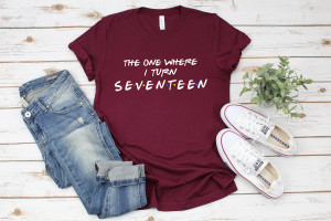 17th Birthday Shirt, Friends Birthday Shirt, Birthday Party Shirt, Sweet Seventeen Shirt, Seventeenth Birthday,Girls Birthday,Friends Themed