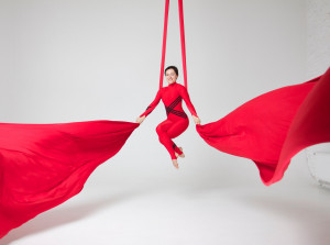 Aerial Silks and Aerial Hardware Kits, Tissue, Fabric Full Set, Hardware - Middle Stretch Active