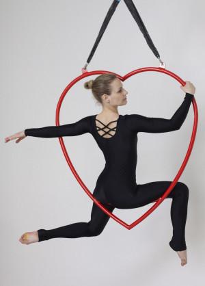 Bodysuit For Aerial Lyra, Long Sleeve Bodysuit, Aerial Suplex Costume, Wear for Yoga