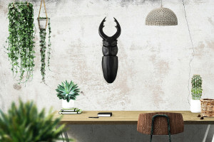 Faux Insect Taxidermy Beetle // Bug Wall Art // Urban jungle wall decor // Black edition // Man cave perfect // FREE SHIPPING