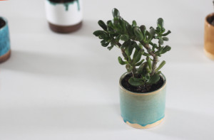 Blue Crackle Indoor Flower Pot, White Turquoise Mustard Yellow Cactus Pottery, Small Ceramic Succulent Seedling Planter, Housewarming Gift