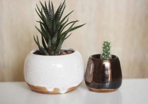 Set of 2 Mini Planters, Indoor Cactus Small Flower Pots, 2 pcs Set Pottery Ceramic Succulent Seedling Dish, Housewarming Gift, Wedding Decor