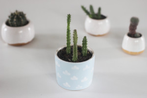 Blue Pottery Planter with White Clouds, Indoor Cactus Flower Pot, Small Ceramic Succulent Seedling Planters, Housewarming Gift