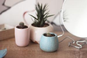 Set of 3 Pottery Planters with Mixed Colors, 3 pcs Set Indoor Cactus Flower Pot, Ceramic Seedling Dish, Housewarming Gift, Wedding Decor