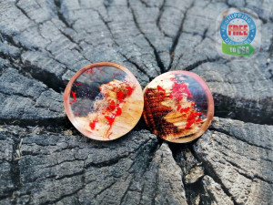 Pair of wood resin plugs, 0g plugs, plugs and tunnels, 00 gauges, resin plugs, wood gauges, ear tunnels, red resin plugs, 00 gauge earrings