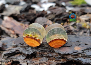 Pair of wood resin plugs,  plugs and tunnels, ear gauges, wood gauges, wooden gauges, resin plugs, 00 gauge earrings, 0g plugs, 00 gauges,