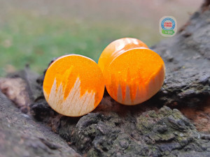 Pair of wood resin plugs, 0g plugs, plugs and tunnels, 00 gauges, resin plugs, wood gauges, ear gauges, 00 gauge earrings, custom plugs