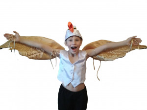 Bird Costume Golden Wings Seagull Scuttle Halloween  Christmas Party Children Size  Little Mermaid Bird Costume Party Carnival
